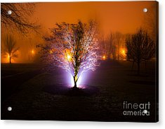 Beautiful Foggy Night 2 Acrylic Print