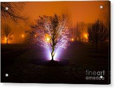Beautiful Foggy Night 2 Acrylic Print by Michael Cross
