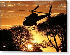 Beautiful Helicopter Acrylic Print by Paul Job
