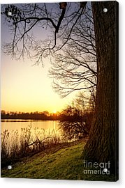 Beautiful Lake Acrylic Print by Daniel Heine