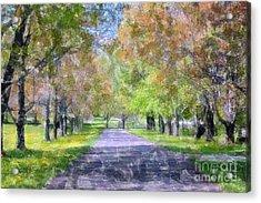 Beautiful Pathway Acrylic Print by Kathleen Struckle