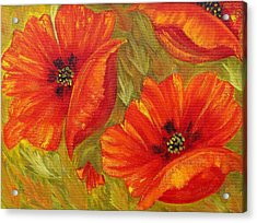Beautiful Poppies Acrylic Print