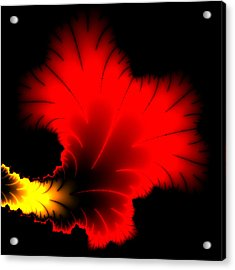 Beautiful Red And Yellow Floral Fractal Artwork Square Format Acrylic Print by Matthias Hauser