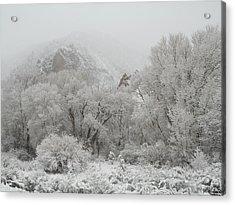Beautiful Snow April In Utah Acrylic Print