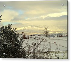 Beautiful Sparkling Snow Acrylic Print by Phyllis Kaltenbach