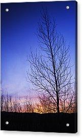 Beautiful Sunrise In Boise Idaho Usa Acrylic Print by Vishwanath Bhat