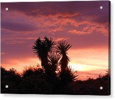 Beautiful Sunset In Arizona Acrylic Print