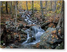 Beautiful Vermont Scenery 31 Acrylic Print by Paul Cannon