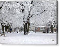 Beautiful Winter Park Acrylic Print by Charline Xia