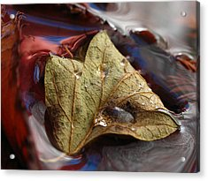 Beautiful World Acrylic Print by Juergen Roth