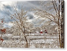 Beauty After The Storm Acrylic Print by Tricia Marchlik