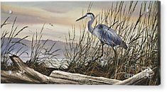 Beauty Along The Shore Acrylic Print by James Williamson