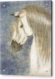 Beauty And Strength1 Acrylic Print by Debbie Portwood