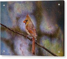 Beauty And The Beak Acrylic Print