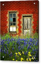 Beauty And The Door - Texas Bluebonnets Wildflowers Landscape Door Flowers Acrylic Print by Jon Holiday