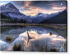 Beauty Creek Pre-dawn Acrylic Print by Brian Stamm