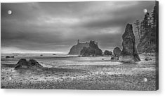 Beauty In Grey Acrylic Print by James Heckt
