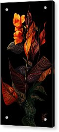 Beauty In The Dark Acrylic Print