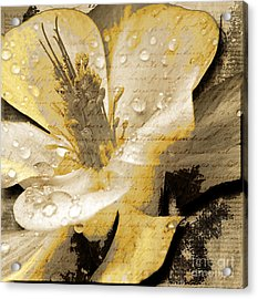 Beauty Iv Acrylic Print by Yanni Theodorou