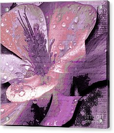 Beauty Ix Acrylic Print
