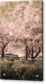 Beauty Of A Spring Garden Acrylic Print by Julie Palencia