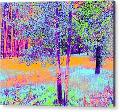 Acrylic Print featuring the photograph Beauty Of An Aspen Grove by Ann Johndro-Collins
