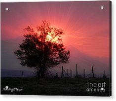 Beauty Of Sunset Acrylic Print by Michelle Frizzell-Thompson