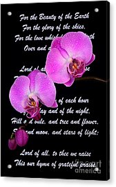 Beauty Of The Earth Acrylic Print by Pattie Calfy