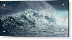 Beauty Of The Extreme Acrylic Print by Bob Christopher