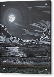 Acrylic Print featuring the painting Beauty Of The Night by Ian Donley