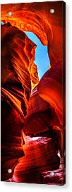 Beauty Within Acrylic Print by Az Jackson