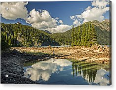 Boundless Beauty Acrylic Print by Aaron Bedell