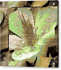 Beauty X Acrylic Print by Yanni Theodorou