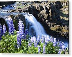 Beautyfull Cascade Acrylic Print