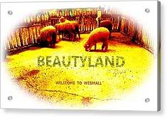 Beautyland Acrylic Print
