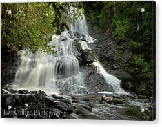 Beaver Brook Falls Acrylic Print by Tammy Collins