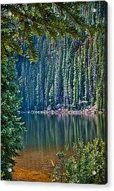 Beaver Lake  Acrylic Print