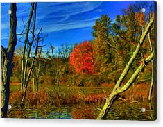 Beaver Marsh In October Acrylic Print by Dennis Lundell