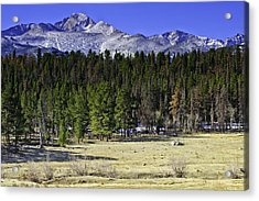 Beaver Meadows Acrylic Print by Tom Wilbert