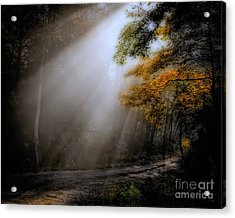 Acrylic Print featuring the photograph Beckoning by Brenda Bostic