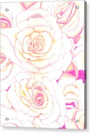 Bed Of Roses Acrylic Print by Dusty Reed