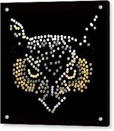 Bedazzled Owl Acrylic Print