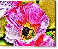 Bee Here In Colour Acrylic Print by Al Fritz