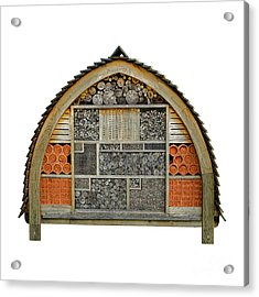 Bee Hotel Acrylic Print by Olivier Le Queinec