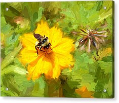 Bee On Flower Painting Acrylic Print by Ludwig Keck