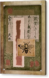 Bee Papers Acrylic Print by Carol Leigh