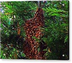 Bee Swarm Acrylic Print