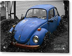 Acrylic Print featuring the photograph Beetle Garden by Angela DeFrias