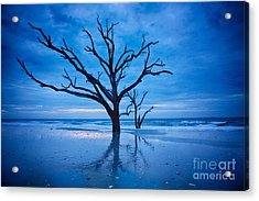 Before Dawn Acrylic Print by Carrie Cranwill