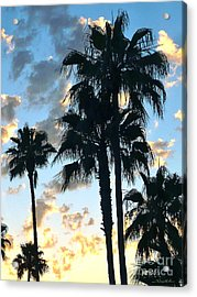 Before The Dusk Acrylic Print by Gem S Visionary